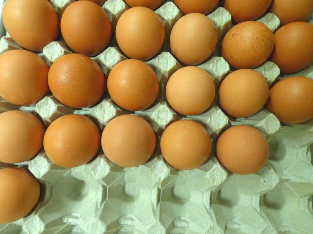 braune Eier in einer Papp-Eierschale